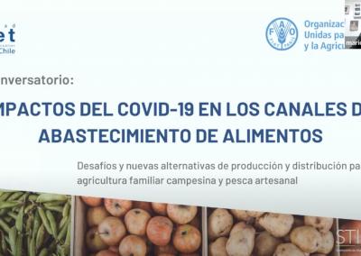 Conversatorio: Impactos del COVID-19 en los canales de abastecimiento de alimentos. Desafíos y nuevas alternativas de producción y distribución para la agricultura familiar campesina y pesca artesanal